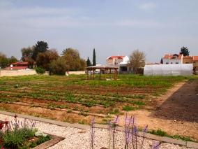 Fields at the Farm School